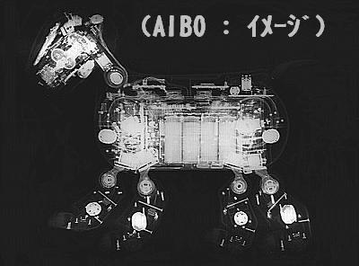 AIBO2_X1_s.jpg