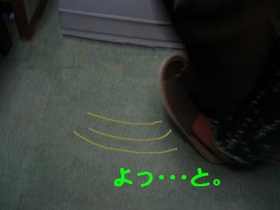 IMG_2904_s.jpg
