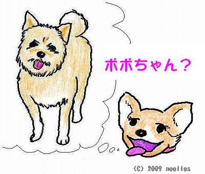 popo_smile_r_s.jpg