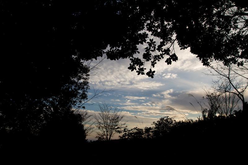 20111029_018.jpg