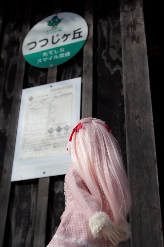 20120114_004.jpg
