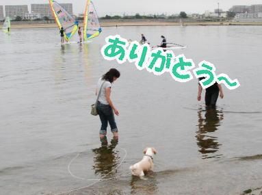 2009・06・21鳴尾浜4