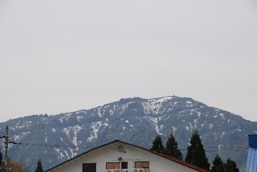 2009・05・02ハチ高原1
