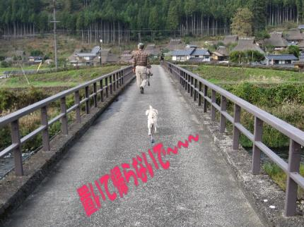 2008・11・02・由良川1