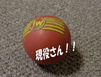 2008・11・10ボール2