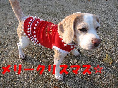 2008・12・24クリスマス5