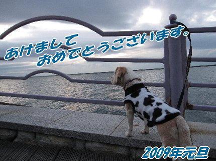 2009・01・01
