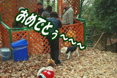 2009・01・04稲荷山オフ2