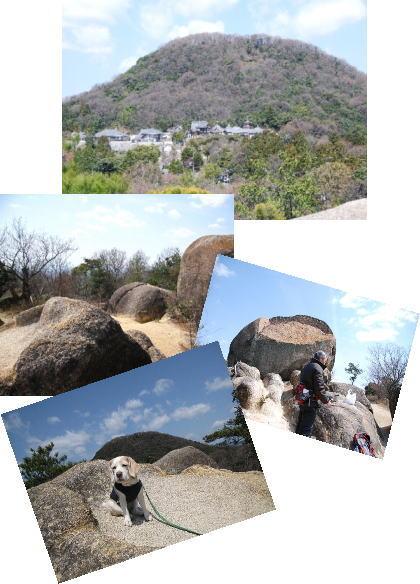 2009・03・29甲山2