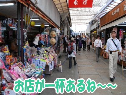 2009・04・11金毘羅参どう2