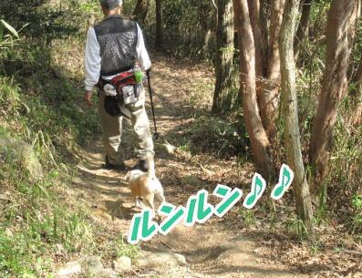 2009・04・12六甲5