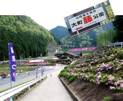 2009・05・02フジ公園1