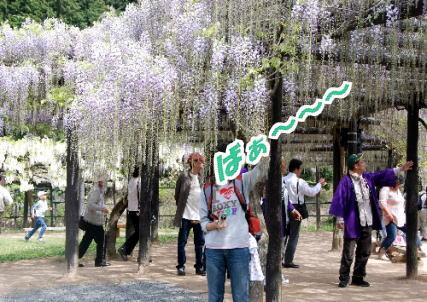 2009・05・02フジ公園3