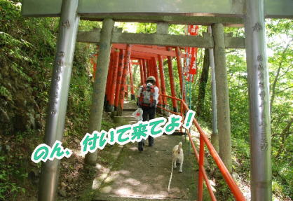 2009・05・09信貴山鳥居