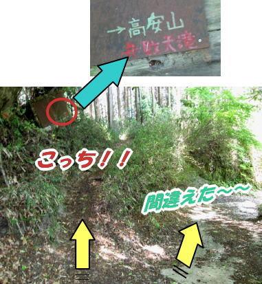 2009・05・09信貴山分岐
