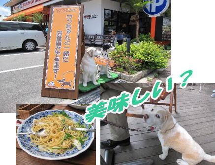 2009・05・31ヅカカフェ