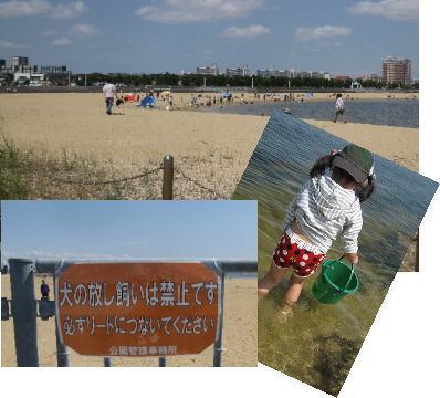 2009・05・31潮芦屋浜