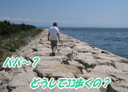 2009・05・31防波堤