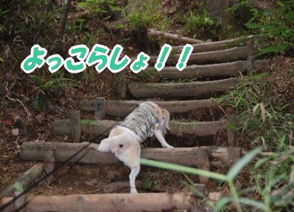 2009・06・14よっこらしょ!!