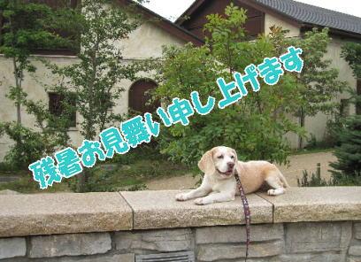 2009・08・12夕涼み1