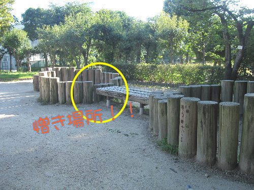 2011・09・07公園2