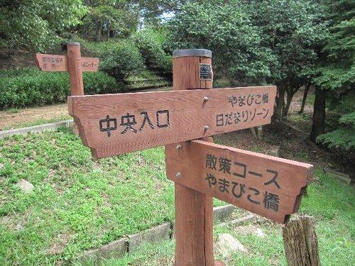 2011・09・18ひよどり公園2