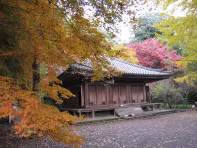 富貴寺 2009