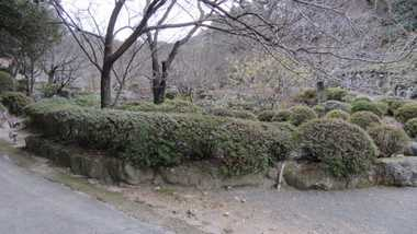 御船山楽園2