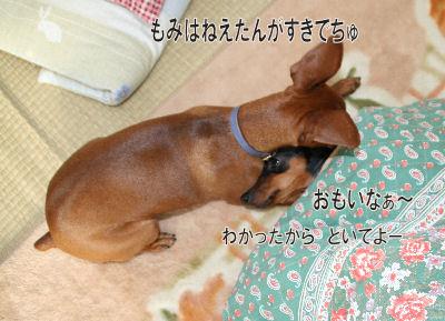momiji-3-43.jpg