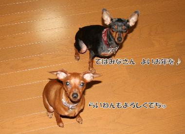 momiji-3-48.jpg