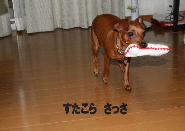 momiji-4-36.jpg
