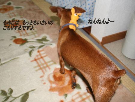 momiji-5-69.jpg