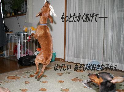 momiji-5-turi5.jpg