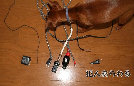 momiji-kowasu1.jpg