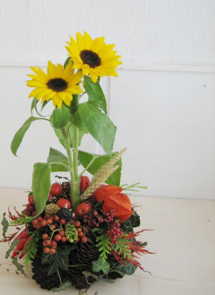 Flower4kemp1.jpg