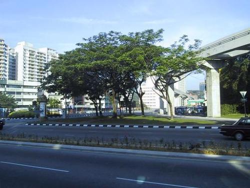 20030306.jpg