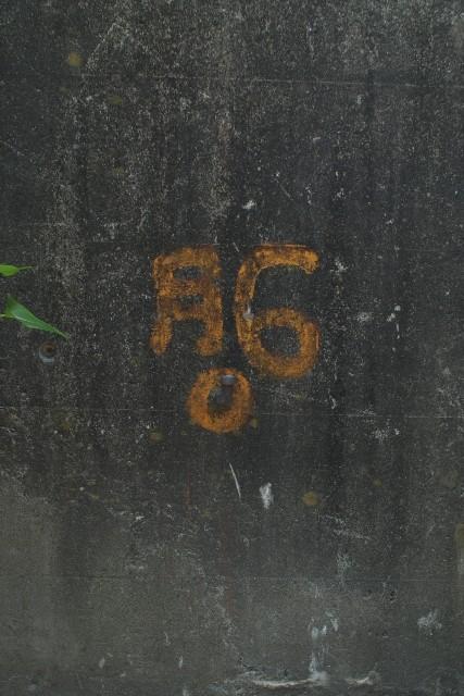 74056413sp.jpg
