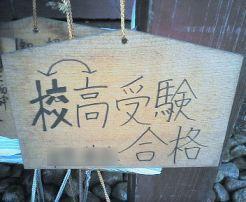 531_20081031002143.jpg