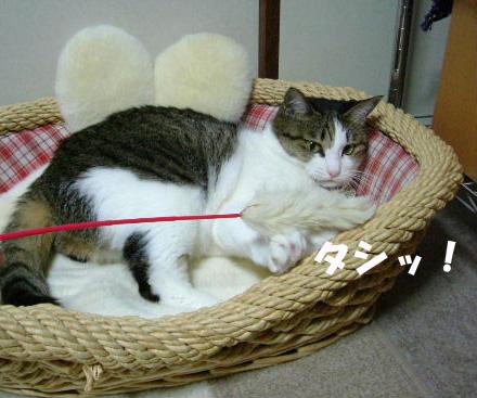 おもちゃめい③のコピー