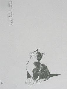 010 (18)uta