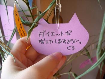 七夕の笹5