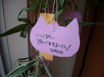 七夕の笹7