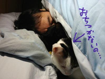 snap_nyaris_2012222053.jpg