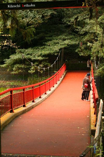 2008 11月9日 菊地渓谷 085