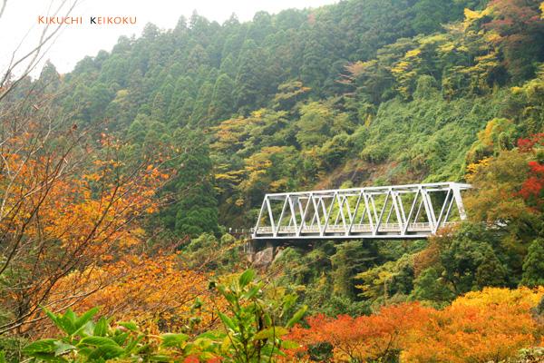 2008 11月9日 菊地渓谷 090