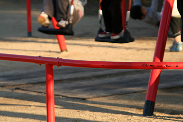 2008 11月30日 平成大通り公園 052