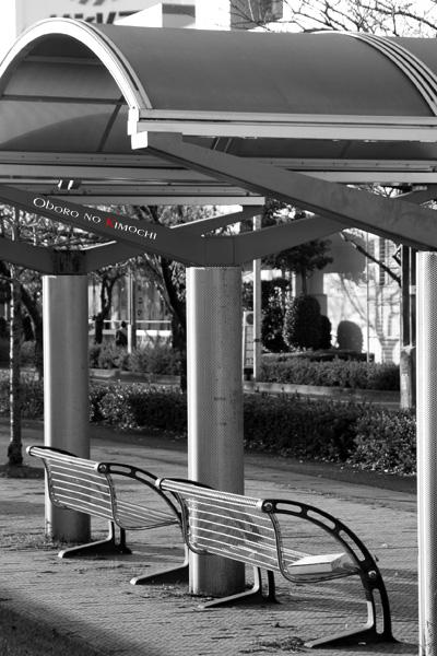 2008 11月30日 平成大通り公園 057