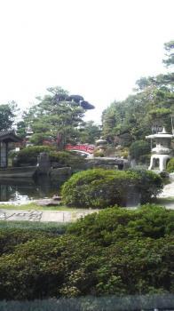 芦原温泉 美松3