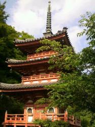 三室戸寺8