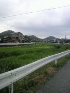 長岡のゲンジボタル及びその発生地3